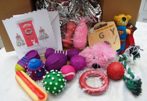 CHRISTMAS SMALL DOG PUPPY TOY SET 15 XMAS DOG TOYS IN GIRLY PINKS & FREE CARD